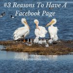 #3 Reasons To Have A Facebook Page