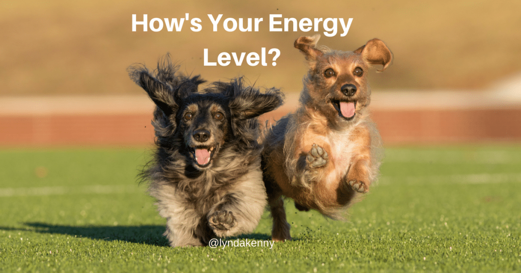 Your Energy Level and Why It's Important To Track It